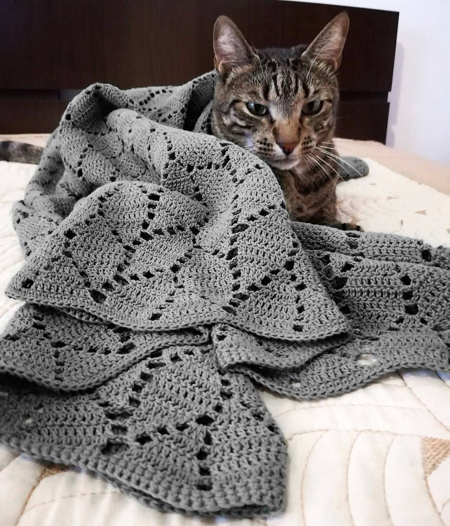 Turcoaz Cu Vanilie Snowflakescrochetpatterndiagram Crochet Baby Blanket Free Pattern